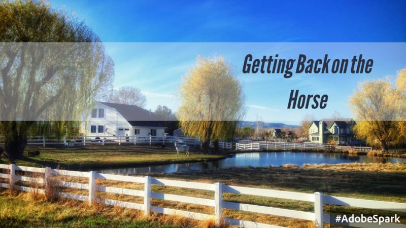 "scenic image of a fence and pond with a horse staring at the camera from a distance; text overlay ""Getting Back on the Horse"""